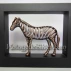 Zebra 3D Frame